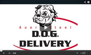 DOG Delivery Video